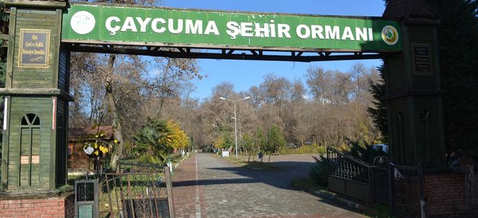 KENT ORMANI ÇAYCUMA BELEDİYESİ'NDE